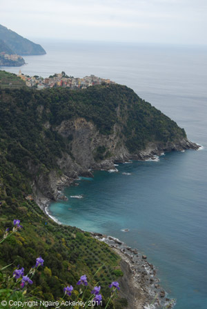 Coastal walking path through Cinque Terre