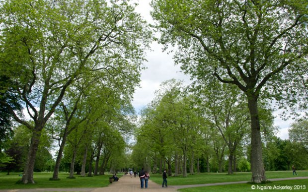 Kensington Gardens, London. Copyright Ngaire Ackerley, 2013.