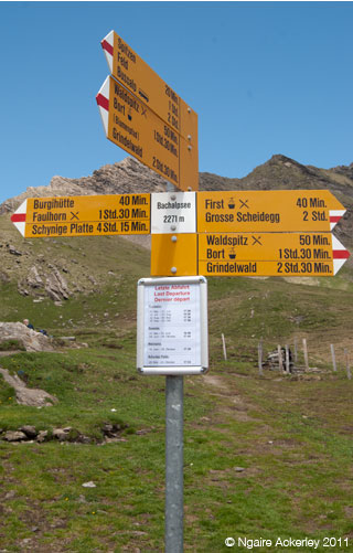 First signage, Switzerland. Copyright Ngaire Ackerley 2013