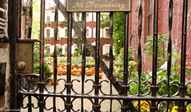 Courtyard of Halloween pumpkins