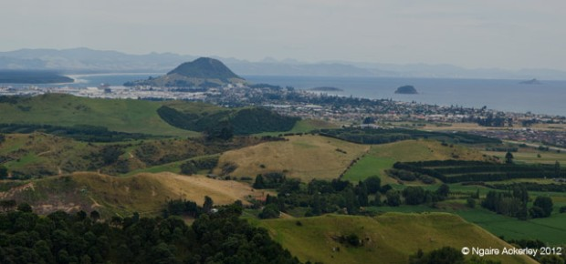 View over Papamoa and Mt. Maunganui