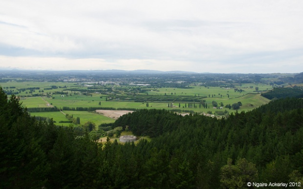 Farmland view from Papamoa Hills
