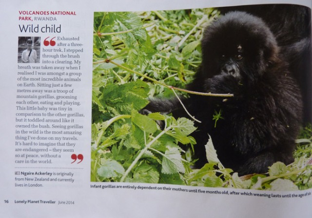 Baby Gorilla Photograph published by Lonely Planet traveller Magazine, June 2014