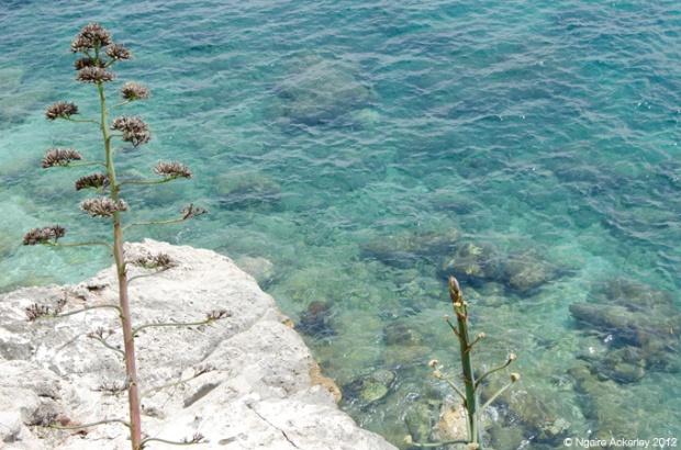 Ocean water - crystal clear in Dubrovnik, Croatia