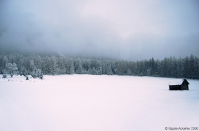 Bavaria in the winter