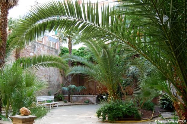 A little oasis inside Perpignan
