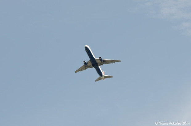 Airplane above Kew Gardens - one of the MANY!