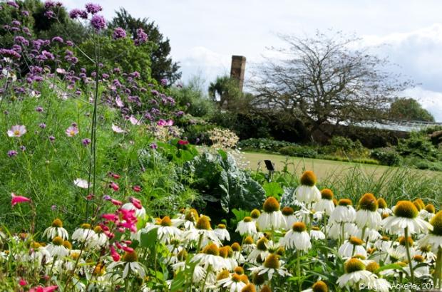 Dukes Garden, Kew Gardens