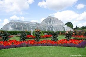 Palm House Parterre, Kew Gardens