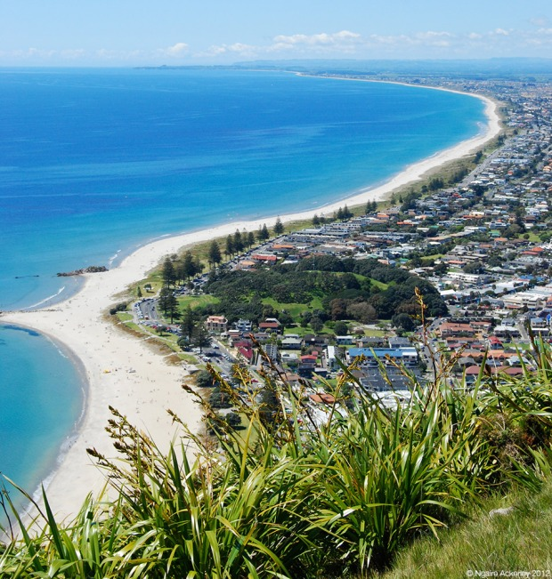 View of the beach and city from the top of Mt. Maunganui
