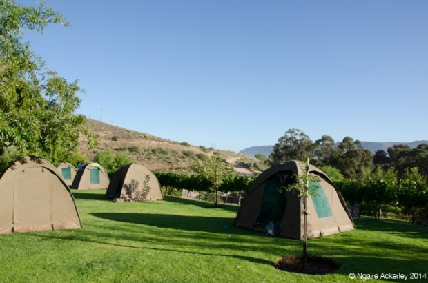 Campsite at Highlanders