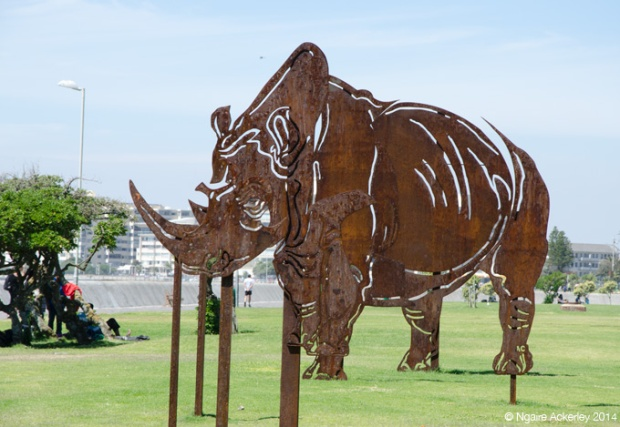 Rhino art along the walkway to Seapoint from Green Point