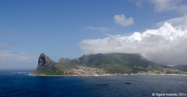 View along Chapman's Peak Drive