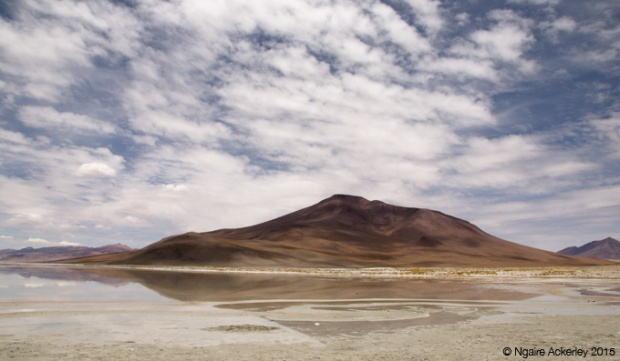 Laguna on the Salar de Uyuni tour