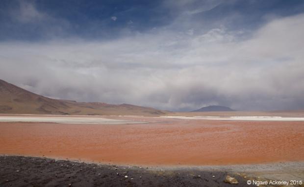 Laguna on the Salar de Uyuni tour