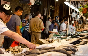 Mercado Central de Santiago - Fish Market