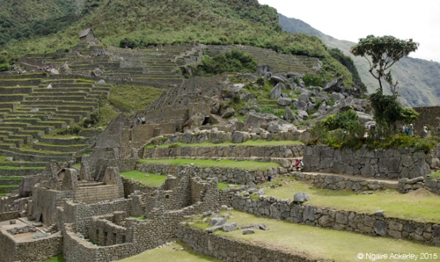 Ruins of Machu Picchu, terraces