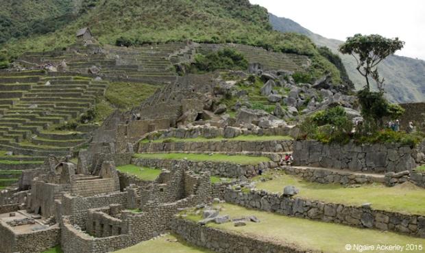 Ruins of Machu Picchu, terraces