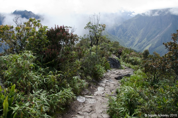 Stairs at top of Machu Picchu Mountain
