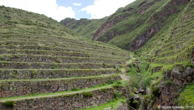 Terraces you hike up through