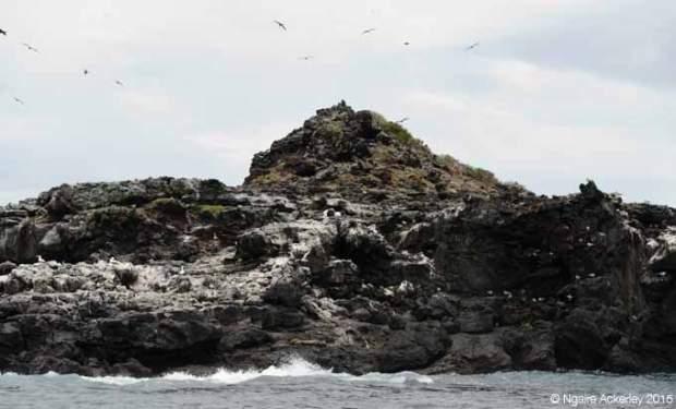 Islote Punta Pit