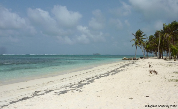 Beach on an island in the San Blas