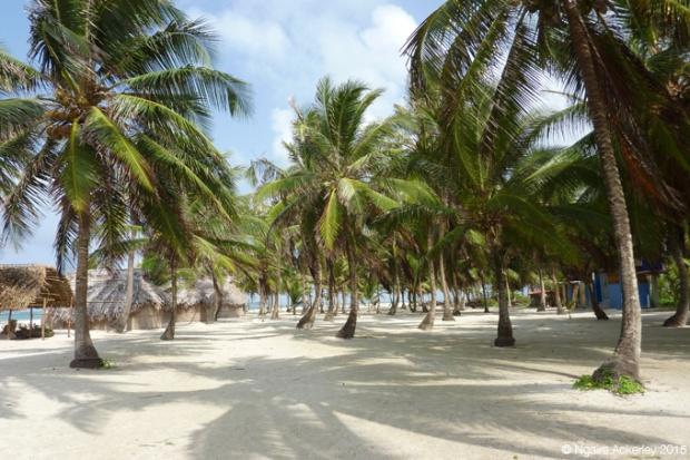 Beach on an island in the San Blas