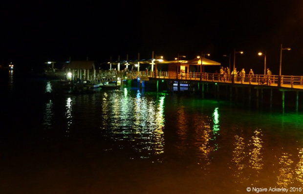 Puerto Ayora by night