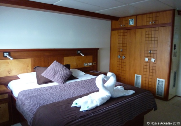 My suite on the Treasure of Galapagos