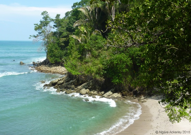 A beach in Manuel Antonio National Park