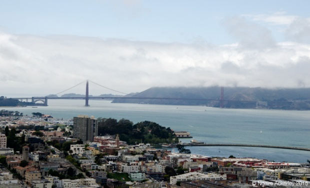 Golden Gate Bridge, view from the Colt Tower