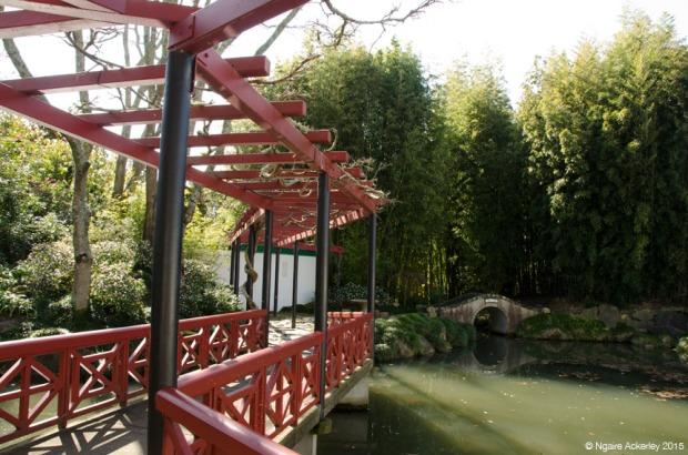 Chinese Scholars Garden, Hamilton Gardens