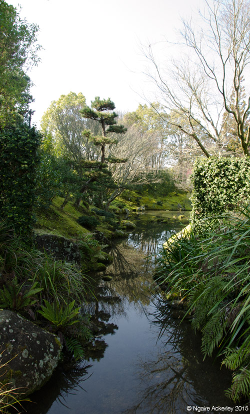 Japanese Garden of Contemplation, Hamilton Gardens