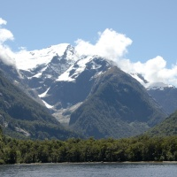 Discovering Milford Sound: Daytrip from Queenstown
