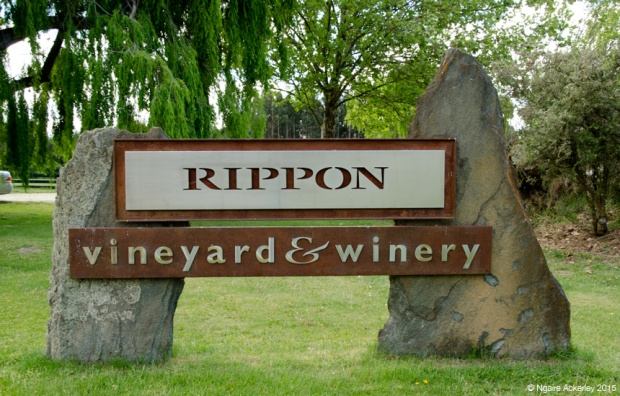 Rippon vineyard and winery