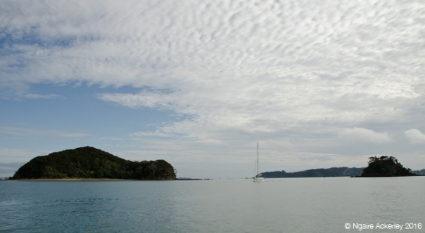 View of the Bay of Islands from the beach in Paihia