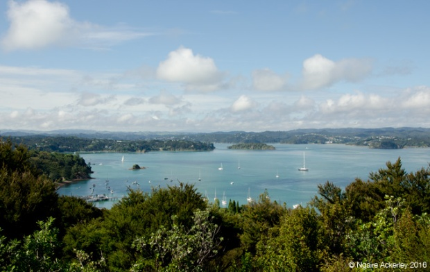 View of the Bay of Islands, Flagstaff Hill