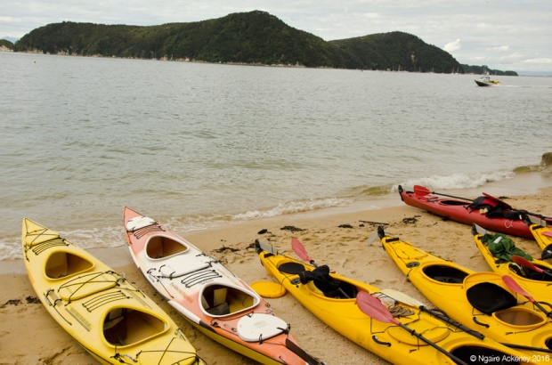 Kayaks at our lunch spot Abel Tasman National Park