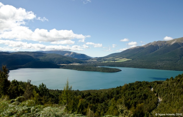 Viewpoint overlooking Nelson Lakes