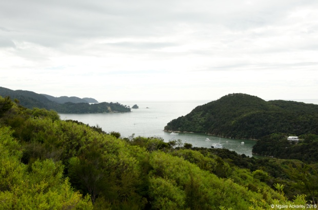 Viewpoint across Abel Tasman National Park