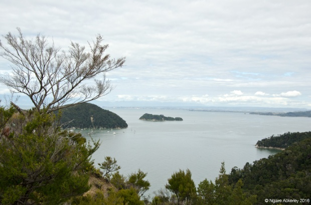 View along Abel Tasman National Park