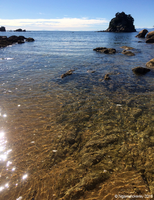 Clear waters at Little Kaiteriteri