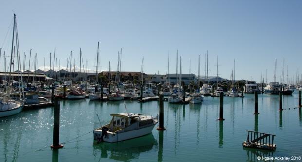 Nelson Marina/Port