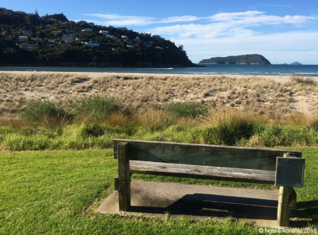 Park bench at Pauanui beach