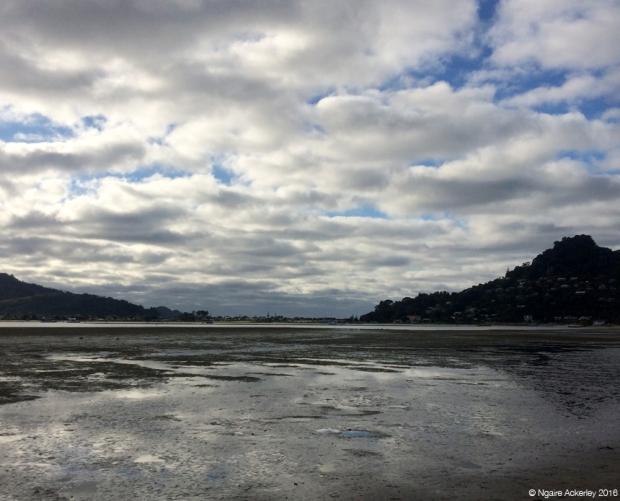 Pauanui Harbour