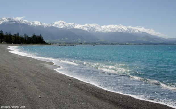 Kaikoura beach, NZ