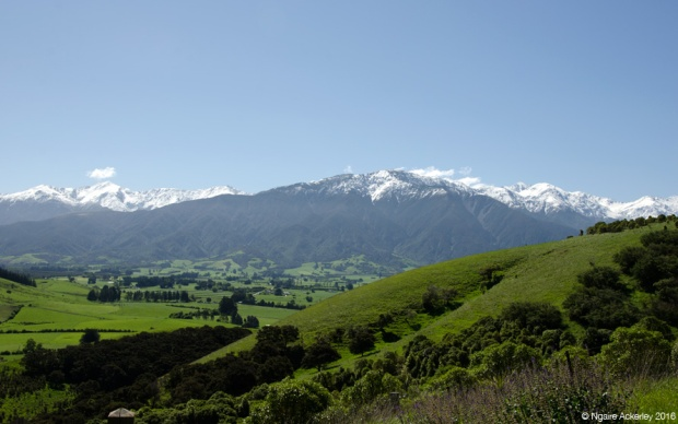View from Ocean Ridge, Kaikoura