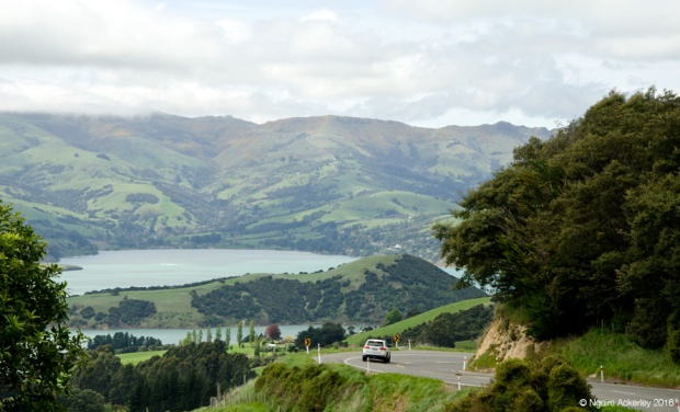 Driving to Akaroa