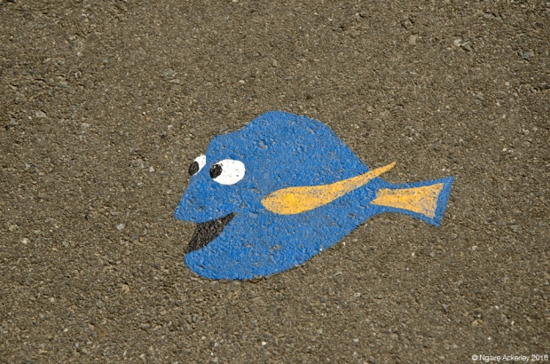 Finding Dory on the pavement
