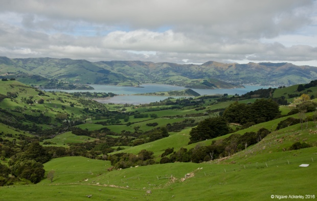 View over Akaroa